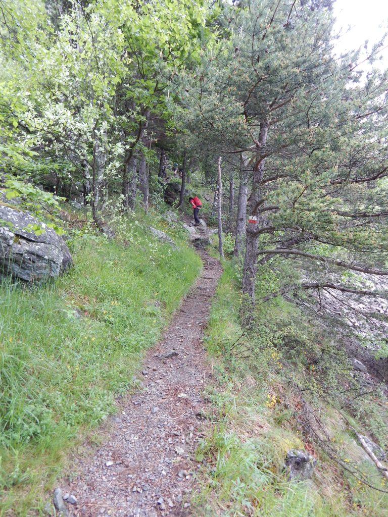 Gita in montagna rocca sella foto05